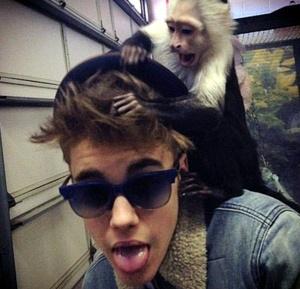 justin-bieber-monkey-photo